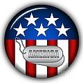Cool America Insignia by Pamela Johnson