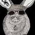 Cool Rabbit by Alex Art and Photo