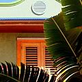 Cool Tropics by Karen Wiles