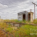 Coonawarra Station South Australia by Colin and Linda McKie