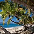 Cooper Island by Adam Romanowicz