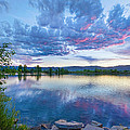 Coot Lake View by James BO  Insogna