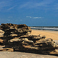 Coquina Rock Formations by Penny Lisowski