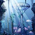 Coral City   by Ciro Marchetti