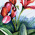 Coral Flower Study by Barbara Beck-Azar