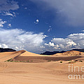 Coral Pink Sand Dunes by Rick Pisio