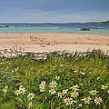 Coral Strand Summers Day Connemara Ireland by Diana Shephard