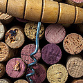 Corkscrew On Top Of Wine Corks by Garry Gay