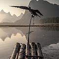Cormorant Fishing On Li River by Matteo Colombo
