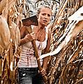 Corn Field by Jt PhotoDesign