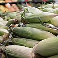 Corn On Display At Farmers Market by Alex Grichenko