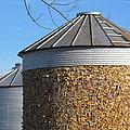 Corn Storage by Tina M Wenger