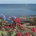 Cornwall Newlyn Coast One by Coventry Wildeheart