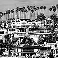 Corona Del Mar California Black And White Picture by Paul Velgos