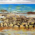 Corrimal Beach Near Towradgi Rook Pool by Pamela  Meredith