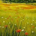 Cortona Poppies by Kirk Graham