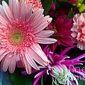 Cosmic Bouquet by Violeta Ianeva