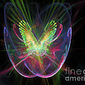 Cosmic Flight by Peter R Nicholls