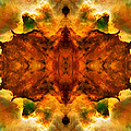 Cosmic Kaleidoscope 2  by Jennifer Rondinelli Reilly - Fine Art Photography