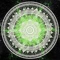 Cosmic Medallians Rgb 1 by Shawn Dall