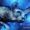 Cosmic Sphynx Cat  by Svetlana Novikova