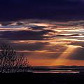 Cosmic Spotlight On Shannon Airport by James Truett