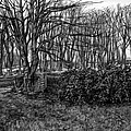 Scottish Landscape by Kenneth Cobb