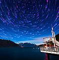 Cosmos by Alexis Birkill