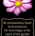 Cosmos Flower With Bible Quote From Esther by Rose Santuci-Sofranko