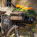 Cotswolds Bicycle by Brian Jannsen