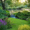 Cotswolds Garden by Brian Jannsen