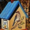 Cottage Birdhouse-back by VLee Watson