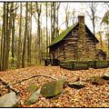 Cottage  by Edward Kreis