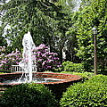 Cottage Garden Fountain by Christiane Schulze Art And Photography