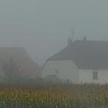 Cottage In Mist by Cheryl Miller