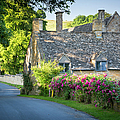 Cottage In The Cotswolds by Brian Jannsen