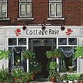 Cottage Rose by Brigitte  Meskey