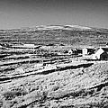 cottages and holiday homes with fields with dry stone walls gweedore county Donegal Republic of Ireland by Joe Fox