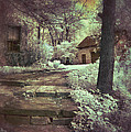 Cottages In The Woods by Jill Battaglia