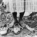 Cotton Picker, 1937 by Granger