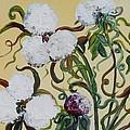 Cotton Squared by Eloise Schneider Mote