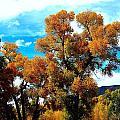 Cottonwood Fall Dress by Gerald Blaine