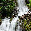 Cougar Falls by Tikvah's Hope