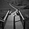 Coulee Stairs by Donald S Hall