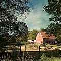 Country Charm by Liane Wright