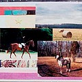 Country Collage 6 by Mary Ann  Leitch
