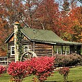 Country Cottage II by Lisa Hurylovich