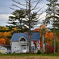 Country Cottage In Autumn by Julie Dant