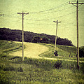 Country Dirt Road And Telephone Poles by Jill Battaglia