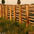 Country Fence In England by Bruce Nutting